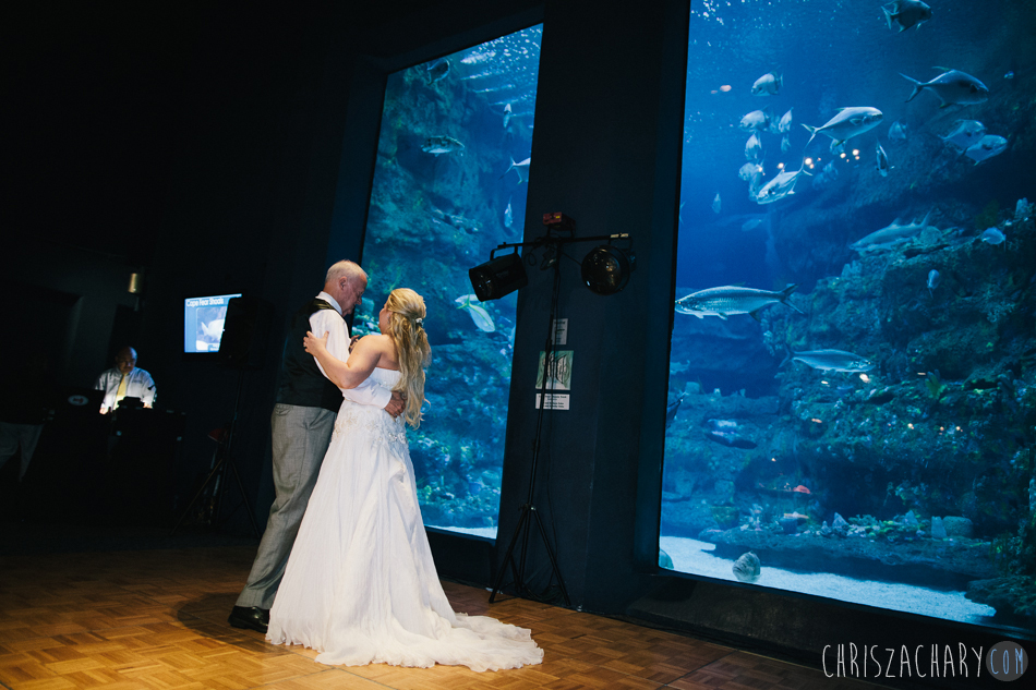 Fort Fisher Aquarium Weddings Archives Chris Zachary